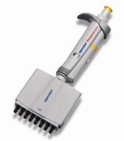 Micropipette multicanaux Eppendorf Research<SUP>&reg;</SUP> Plus (General Lab Product), &agrave; volume variable
